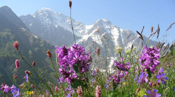 Elbrus Kaukasus1 E1532517868723