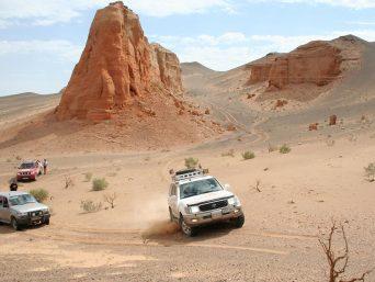 Wüstenslider Mongolei
