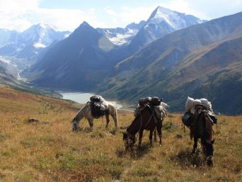 Titelbild Pferdetour