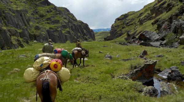 Pferdetour durchs Altei