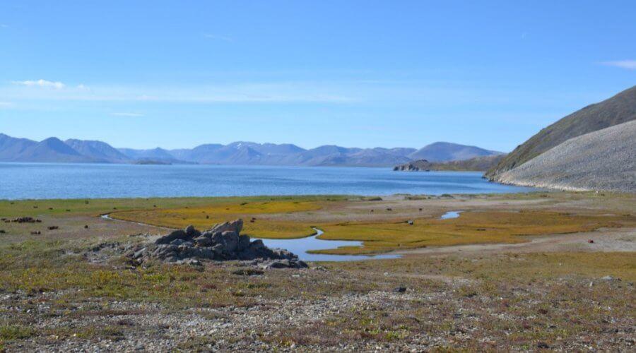 Strand der Beringsee auf Tschukotka